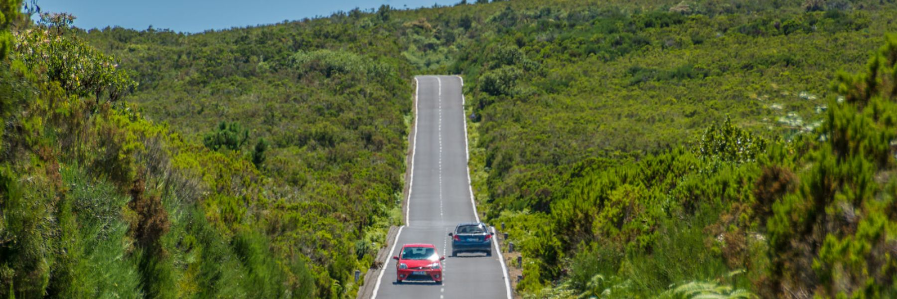Rent a car in Madeira